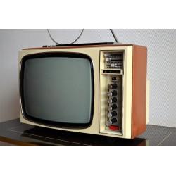 Téléviseur portatif REELA...